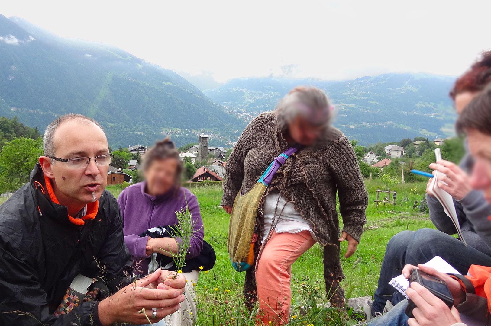 La-Druiderie-stage-plantes-médicinales-juin-2016