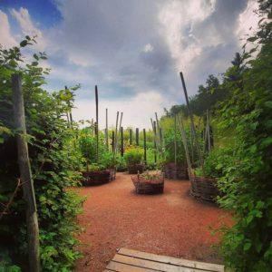 Jardin du nouveau monde après la pluie!